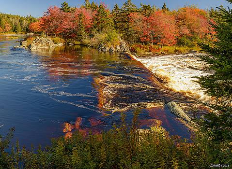 Liscombe Falls by Ken Morris