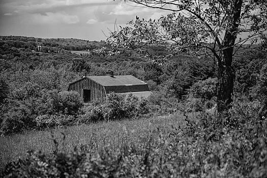 Karol Livote - Litchfield Hills