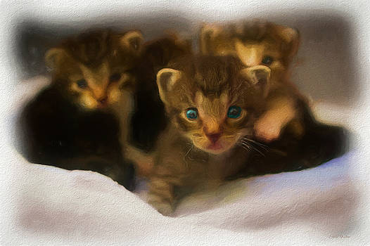 Litter of Kittens - Painting by Ericamaxine Price