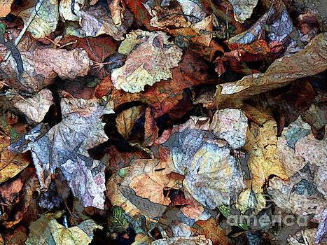 Litter of Leaves by Robert Ball