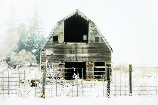 Little Barn by Julie Hamilton