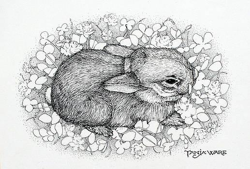Little Big Ears by Tanja Ware