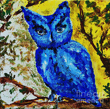 Little Blue Owl by Alys Caviness-Gober