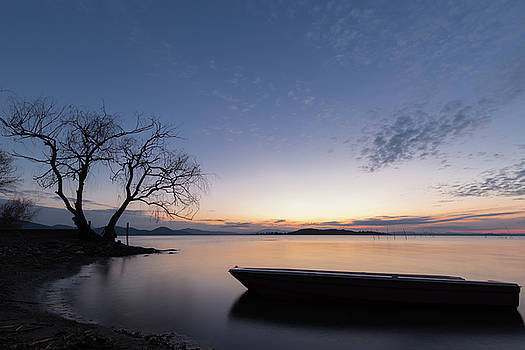 Little boat and tree at dusk by Massimo Discepoli