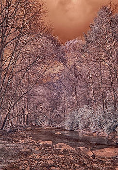 Little Doe River Infrared by Jim Cook