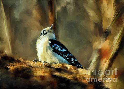 Lois Bryan - Little Downy Woodpecker In The Woods