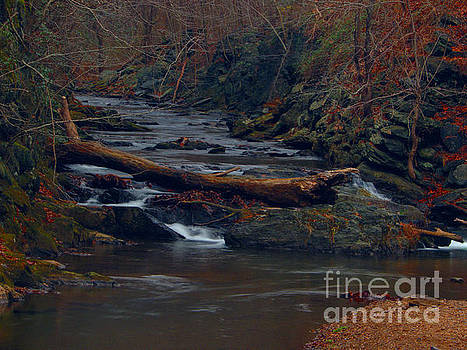 Little Falls by Donald C Morgan