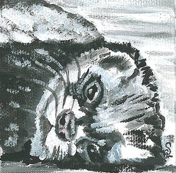 Little Ferret by Sarah Lowe