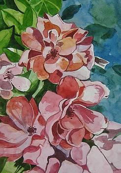 Little Flowers by Akhilkrishna Jayanth