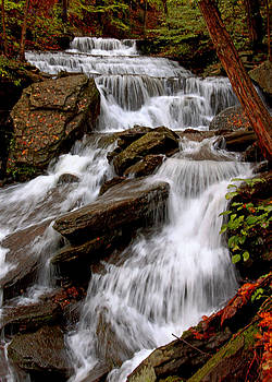Little Four Mile Run Falls by Suzanne Stout