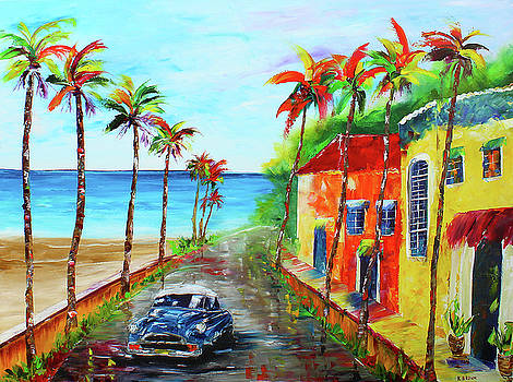 Little Havana by Kevin Brown