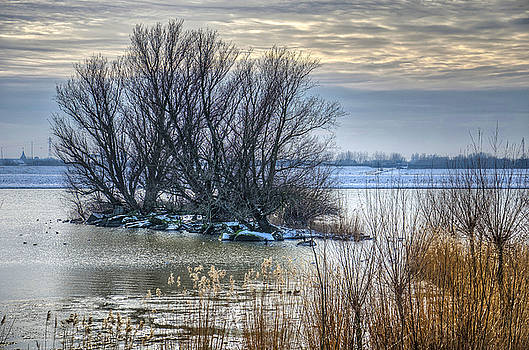Little Island in Winter by Frans Blok