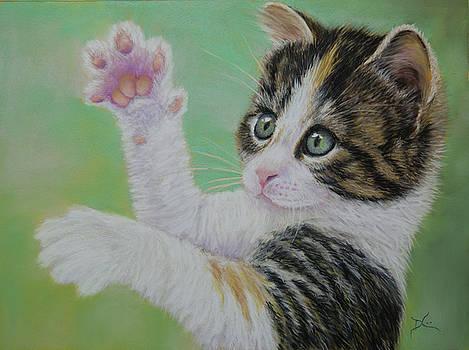 Dee Carpenter - Little Kitten