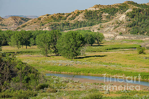 Bob Phillips - Little Missouri River Badlands Five