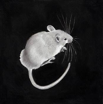 Joyce Geleynse - Little Mouse