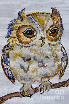 Little Owl  by Ella Kaye Dickey