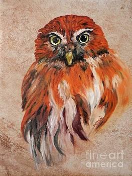 Little Owl by Jan Gibson