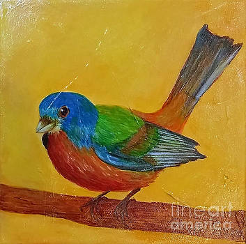Little Painted Bunting by Phyllis Howard