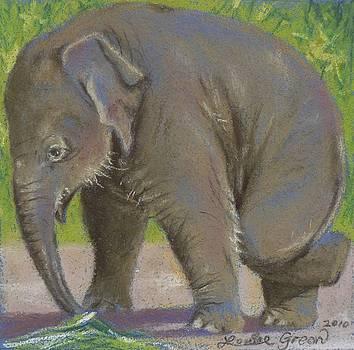 Little Pathi Harn by Louise Green