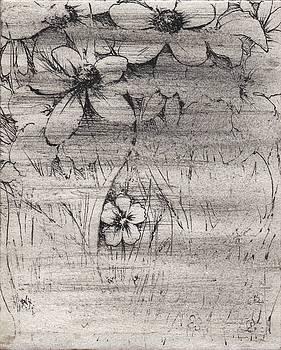 Little Sorrow by Rachel Christine Nowicki