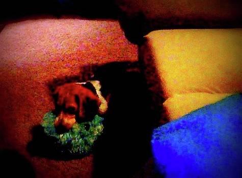 Little Rascal Beagle On Pillows by Debi K Baughman