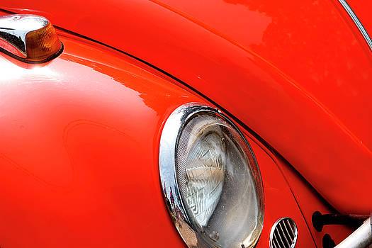 Little Red Bug by Steve Gravano
