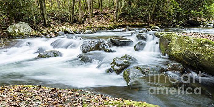 Little River Cascade by Patrick Shupert