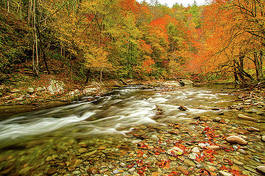 Little River in Autumn by Joe Ladendorf