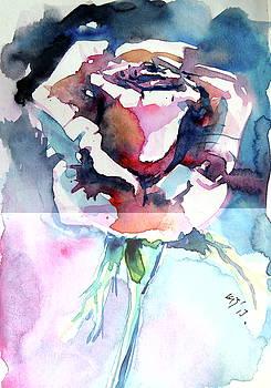 Little rose -postcard by Kovacs Anna Brigitta