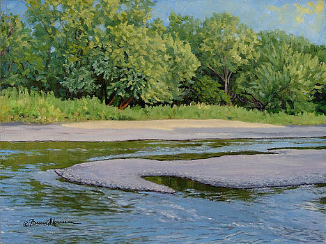 Little Sioux Sandbar by Bruce Morrison