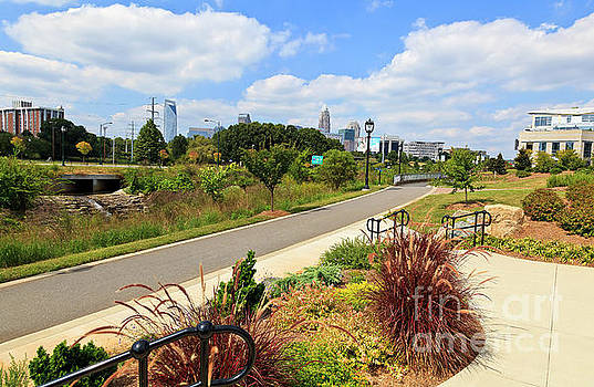 Jill Lang - Little Sugar Creek Greenway in Midtown Park