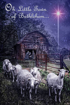 Debra and Dave Vanderlaan - Little Town of Bethlehem