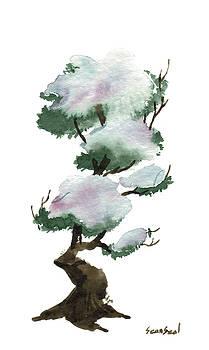 Little Tree 105 by Sean Seal