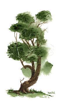 Little Tree 119 by Sean Seal
