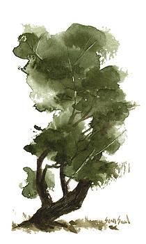 Little Tree 124 by Sean Seal