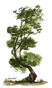 Little Tree 131 by Sean Seal