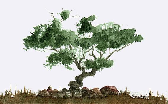Little Tree 2 by Sean Seal
