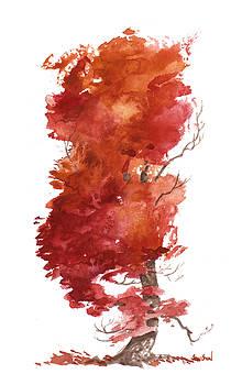 Little Tree 31 by Sean Seal