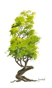 Little Tree 37 by Sean Seal