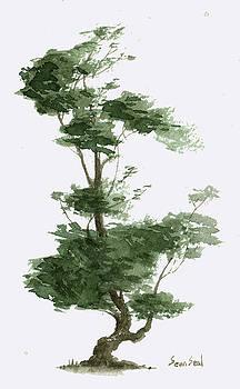 Little Tree 4 by Sean Seal