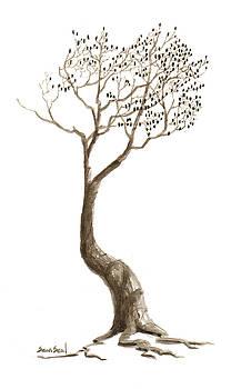 Little Tree 48 by Sean Seal