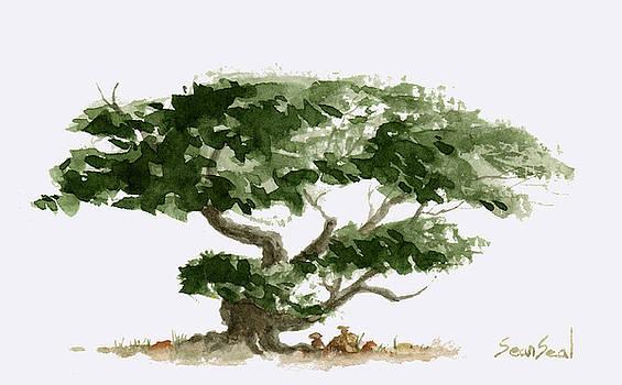 Little Tree 5 by Sean Seal