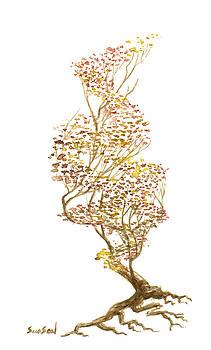 Little Tree 50 by Sean Seal