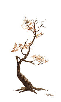 Little Tree 60 by Sean Seal