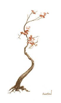 Little Tree 63 by Sean Seal