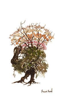 Little Tree 67 by Sean Seal