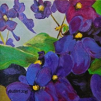 Little Violets by Pamela Trueblood