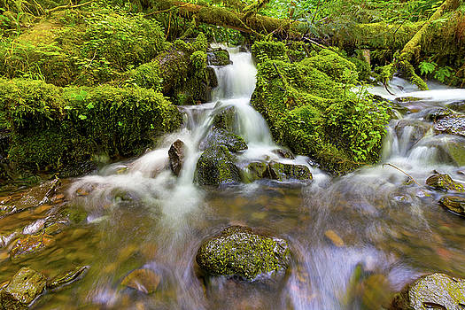Little Waterfalls along Wahkeena Creek by David Gn