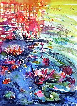 Little waterlily by Kovacs Anna Brigitta