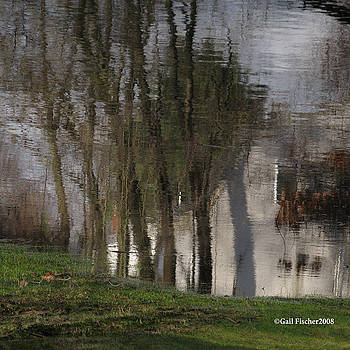Little White House Reflection. by Gail Fischer
